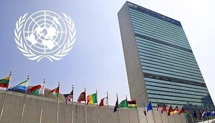 نبيل أبوالياسين : يُهاجم مجلس الأمن ••• لايرى ولايسمع !!